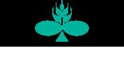 logo_techmetal_rodape_home